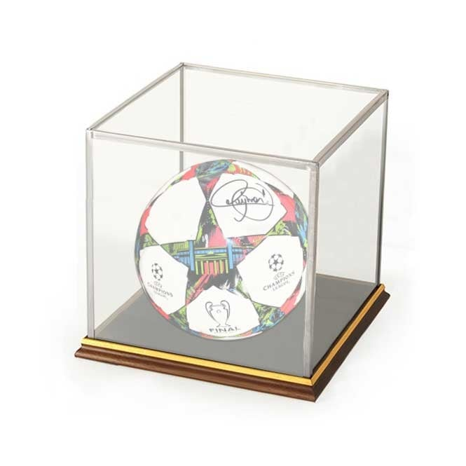 Model Glass Display Case - 285mm x 302mm