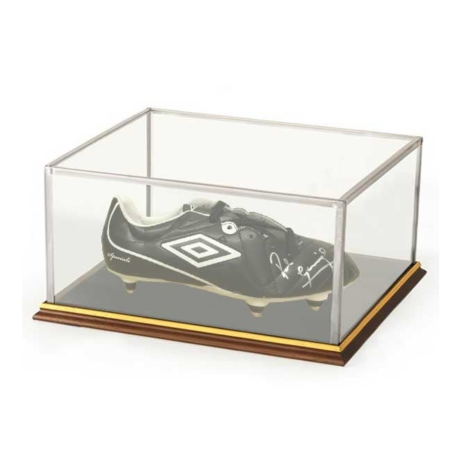 Model Glass Display Case - 385mm x 210mm