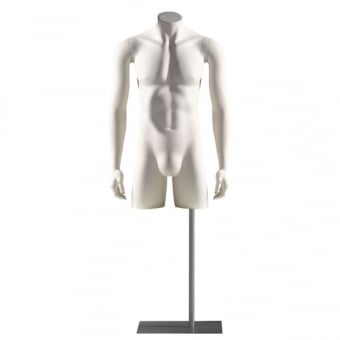 White Male Torso with Stand